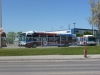 winnipeg-transits-rapid-transit-bus