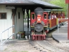 assiniboine-park-train-for-kids-and-adults
