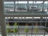 Looking out from Winnipeg\'s International Airport departure level
